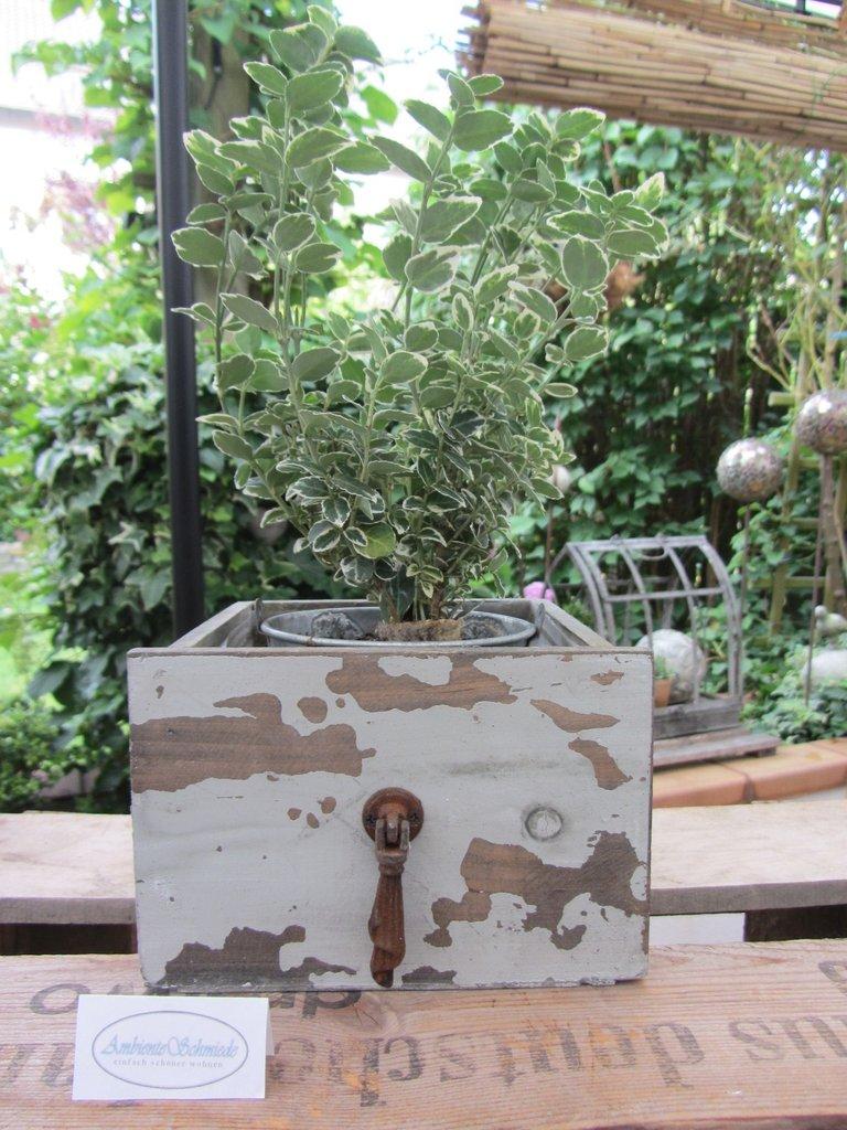 FI Pflanzschublade wunderschön Holz shabby 26 cm Floristik NEU 1 Stück